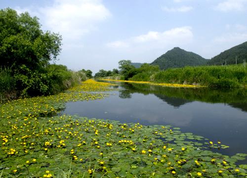 화포천습지 생태공원
