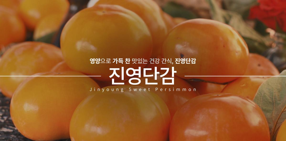 단감 시배지 홍보 동영상
